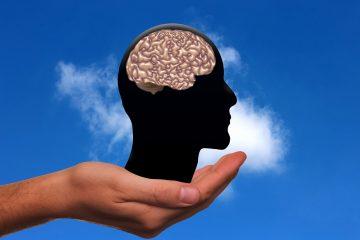 תפקודים ניהוליים מתאוריה למעשה – אימון המוח על בסיס ספורט ומשחק