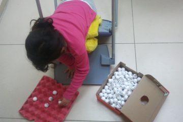 אינטליגנציה, למידה ומשחק, מי מכין את הילד להצליח בחיים?