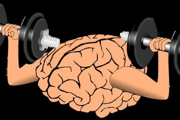 אימון למוח, תפקודיים ניהוליים – הקשר בין  תורשה או סביבה